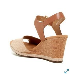 0e538c269df6 Clarks Shoes - Clarks Helio Jet Ankle Strap Wedge